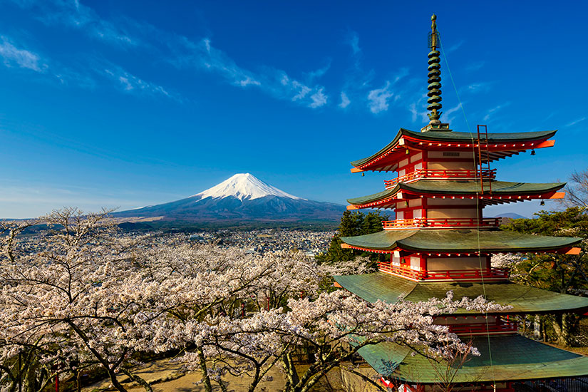 image-Japon-Mont-Fuji-pagode-cerisiers